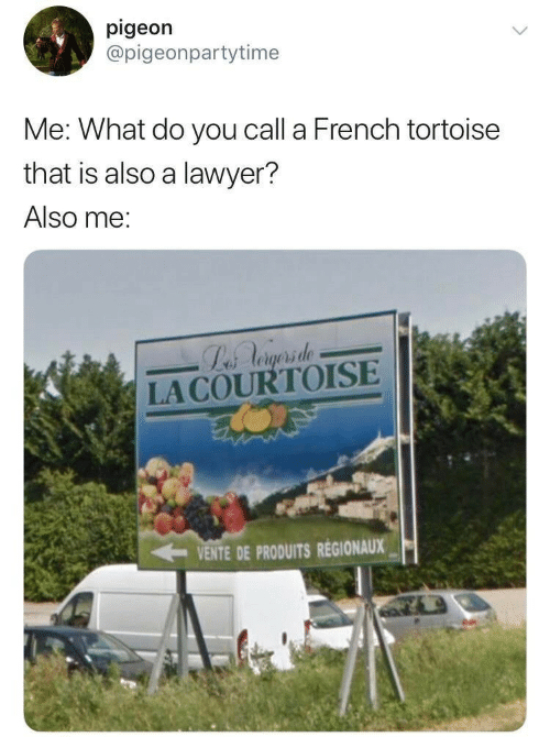 Lawyer: pigeon  @pigeonpartytime  Me: What do you call a French tortoise  that is also a lawyer?  Also me:  Labs Aogsrsde  LACOURTOISE  VENTE DE PRODUITS REGIONAUX