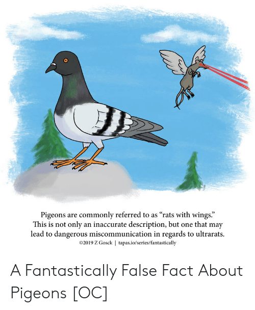 """tapas: Pigeons are commonly referred to as """"rats with wings.""""  This is not only an inaccurate description, but one that may  lead to dangerous miscommunication in regards to ultrarats.  2019 Z Gosck 