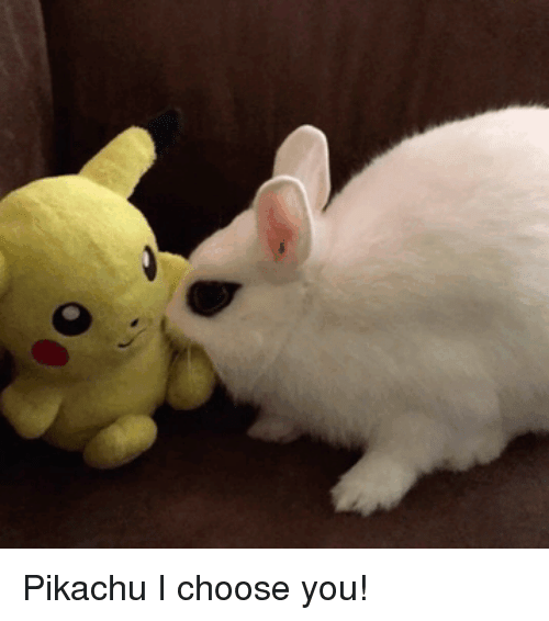 Pikachu, You, and I Choose You