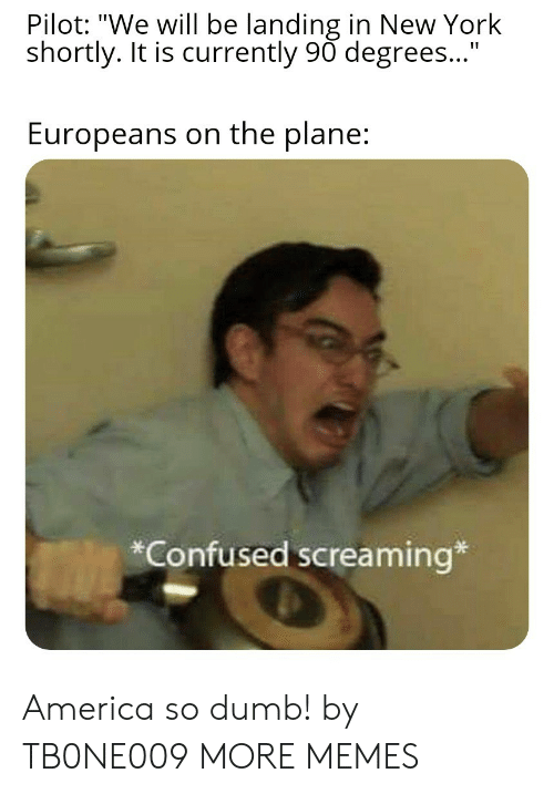 "pilot: Pilot: ""We will be landing in New York  shortly. It is currently 90 degrees...""  Europeans on the plane:  *Confused screaming* America so dumb! by TB0NE009 MORE MEMES"