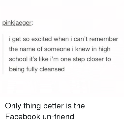 Facebook, School, and Girl Memes: pinkjaeger:  i get so excited when i can't remember  the name of someone i knew in high  school it's like i'm one step closer to  being fully cleansed Only thing better is the Facebook un-friend