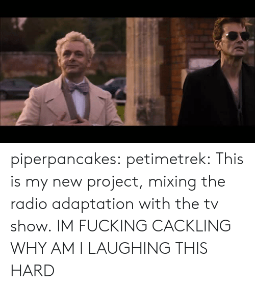 adaptation: piperpancakes:  petimetrek:  This is my new project, mixing the radio adaptation with the tv show.  IM FUCKING CACKLING WHY AM I LAUGHING THIS HARD