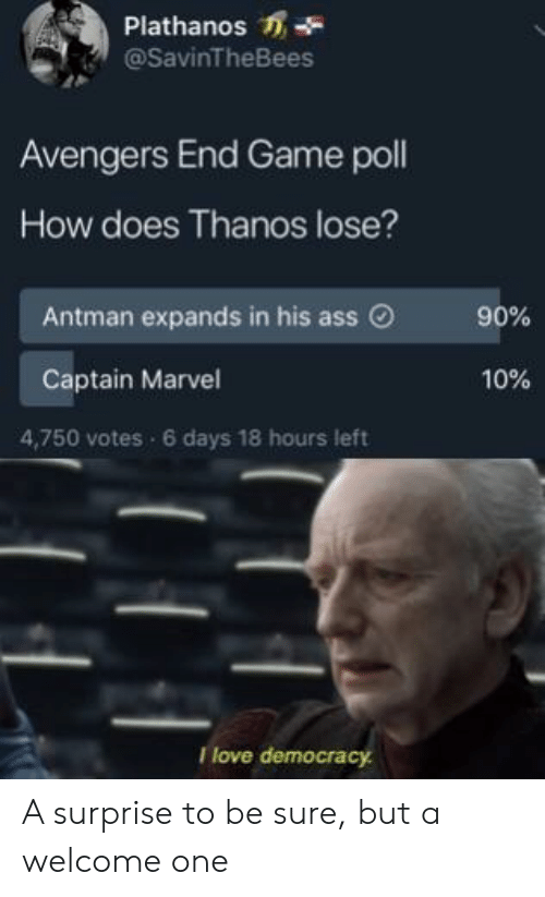Ass, Love, and Antman: Plathanos -  @SavinTheBees  Avengers End Game poll  How does Thanos lose?  Antman expands in his ass O  90%  Captain Marvel  10%  4,750 votes 6 days 18 hours left  I love democrac A surprise to be sure, but a welcome one