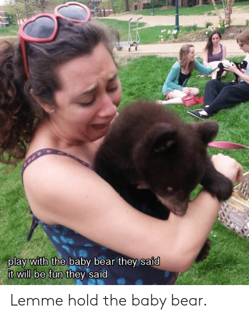 baby bear: play with the baby bear they said  will be fun t Lemme hold the baby bear.