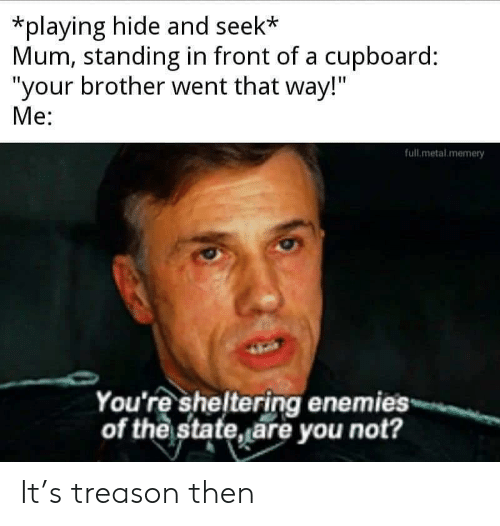 "The State: *playing hide and seek*  Mum, standing in front of a cupboard:  ""your brother went that way!""  Me:  full.metal memery  You're sheltering enemies  of the state, are you not? It's treason then"