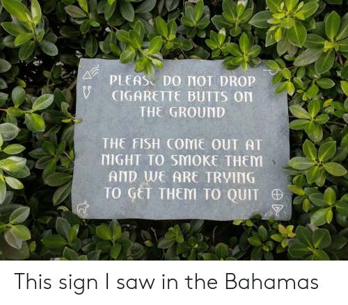 Bahamas: PLEAS DO MOT DROP  CIGARETTE BUTTS On  THE GROUND  THE FISH COME OUT AT  NIGHT TO SMOKE THEM  AND WE ARE TRVING  TO GET THEM TO QUIT This sign I saw in the Bahamas