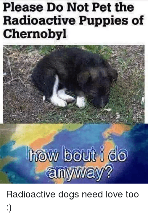 Dogs, Love, and Puppies: Please Do Not Pet the  Radioactive Puppies of  Chernobyl  an Radioactive dogs need love too :)