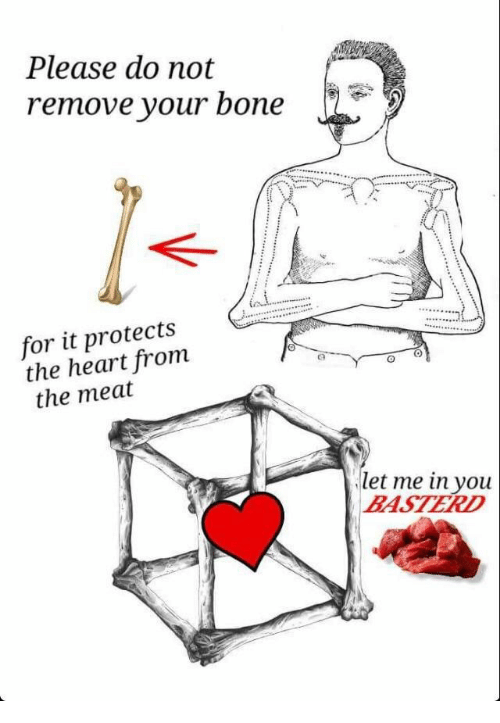 Heart, Bone, and Let Me In: Please do not  remove your bone  for it protects  the heart from  the meat  let me in you  BASTERD