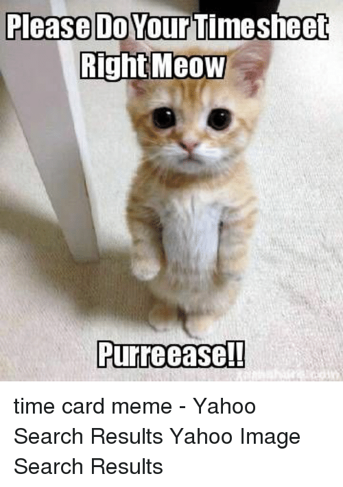 Yahoo Image: Please Do Your  Timesheet  RightMeoW  Purreeasel! time card meme - Yahoo Search Results Yahoo Image Search Results