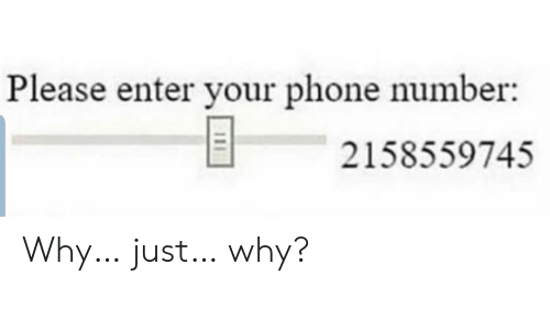 Please Enter Your Phone Number: Please enter your phone number:  2158559745  111 Why… just… why?