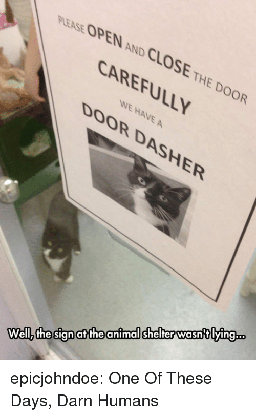 Close The Door: PLEASE OPEN AND CLOSE THE DOOR  CAREFULLY  WE HAVE A  DOOR DASHER  animal shelter wasntlying..  at the  Wellz the sign epicjohndoe:  One Of These Days, Darn Humans