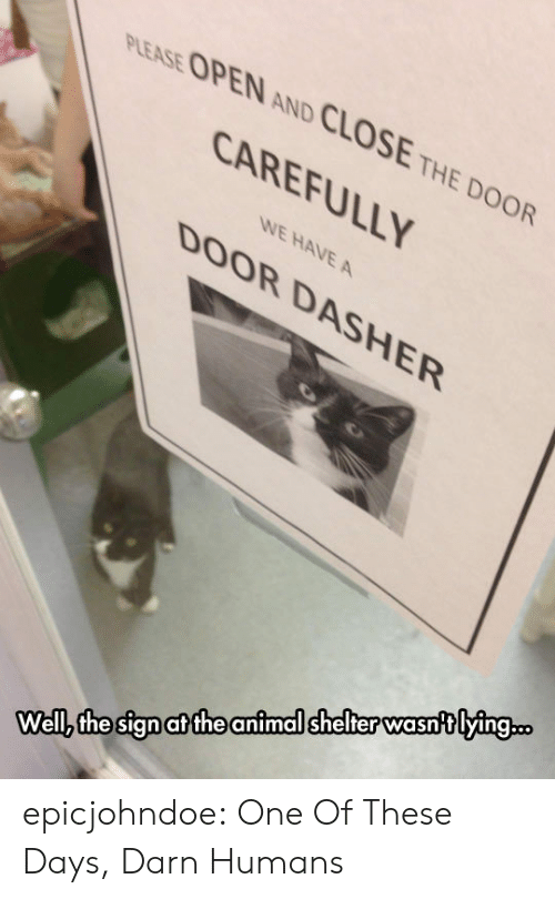 Close The Door: PLEASE OPEN AND CLOSE THE DOOR  CAREFULLY  WE HAVE A  DOOR DASHER  Wellz the sign at the animal shelter wasntlying.. epicjohndoe:  One Of These Days, Darn Humans