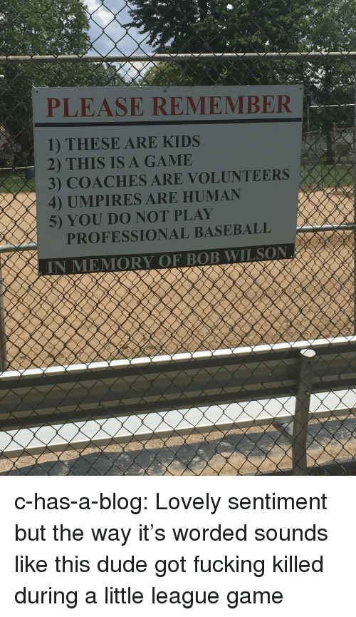 Baseball, Dude, and Fucking: PLEASE REMEMBER  1) THESE ARE KIDS  2) THIS IS A GAMIE  3) COACHES ARE VOLUNTEERS  4) UMPIRES ARE HUMAN  5) YOU DO NOT PLAY  PROFESSIONAL BASEBALL c-has-a-blog: Lovely sentiment but the way it's worded sounds like this dude got fucking killed during a little league game