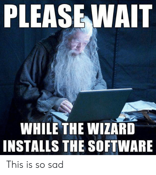 please wait: PLEASE WAIT  WHILE THE WIZARD  INSTALLS THE SOFTWARE This is so sad