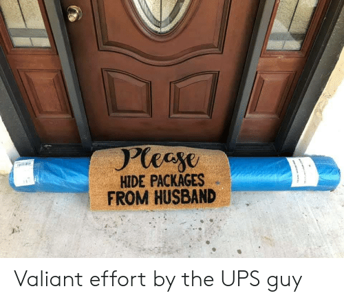 UPS: Pleeye  HIDE PACKAGES  FROM HUSBAND Valiant effort by the UPS guy