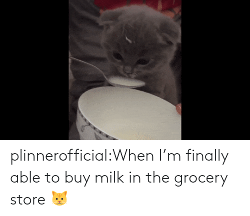 finally: plinnerofficial:When I'm finally able to buy milk in the grocery store 🐱