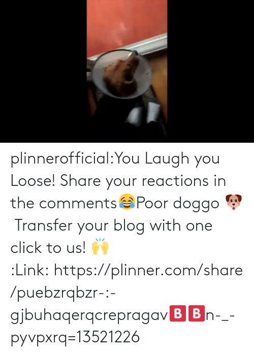 loose: plinnerofficial:You Laugh you Loose! Share your reactions in the comments😂Poor doggo 🐶 Transfer your blog with one click to us! 🙌 :Link: https://plinner.com/share/puebzrqbzr-:-gjbuhaqerqcrepragav🅱🅱n-_-pyvpxrq=13521226