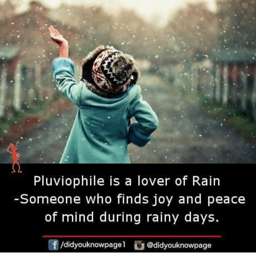 Memes, Rain, and Mind: Pluviophile is a lover of Rain  -Someone who finds joy and peace  of mind during rainy days.  f/didyouknowpage1 @didyouknowpage