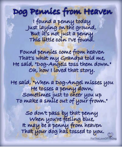 """Heaven, Pog, and Grandpa: pog Pennies from Heaven  t found a penny today  Just Laying on the ground,  But tt's not just a penn  This úttle coin ive fou  Found pennies come from heaven  Thats what my Grandpa told me,  He said, 'Dog-Angels toss them down..  oh, how t loved that story  He said, """"when a Dog-Angel misses you  He tosses a penny down,  Sonmetimes just to cheer you up  To make a smile out of your frown.  So dont pass by that penny  when youre feeling blue,  t mau be a pennu from heaven  That your dog has tossed to you.  ForTheLoveOfT  ieDog"""