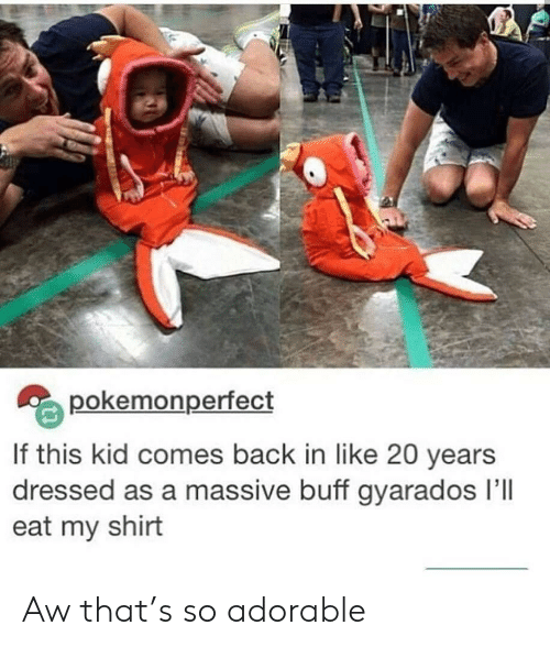 So Adorable: pokemonperfect  If this kid comes back in like 20 years  dressed as a massive buff gyarados Ill  eat my shirt Aw that's so adorable