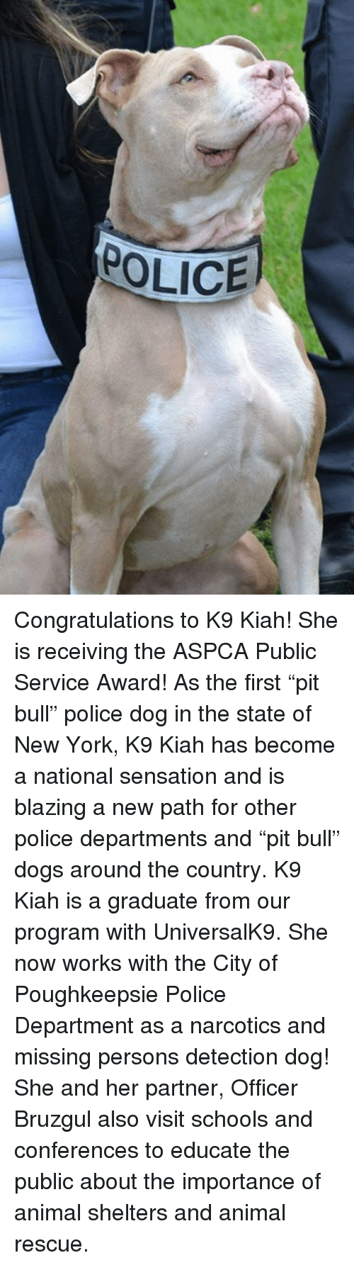 "Missing Person: POLICE Congratulations to K9 Kiah! She is receiving the ASPCA Public Service Award! As the first ""pit bull"" police dog in the state of New York, K9 Kiah has become a national sensation and is blazing a new path for other police departments and ""pit bull"" dogs around the country.   K9 Kiah is a graduate from our program with UniversalK9. She now works with the City of Poughkeepsie Police Department as a narcotics and missing persons detection dog! She and her partner, Officer Bruzgul also visit schools and conferences to educate the public about the importance of animal shelters and animal rescue."