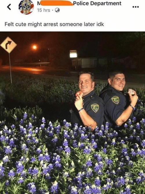 Cute, Dank, and Police: Police Department  15 hrs.  Felt cute might arrest someone later idk