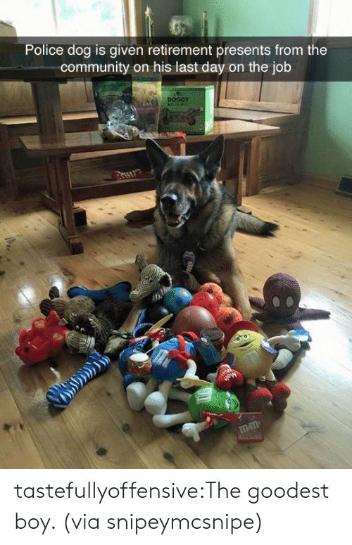 Community, Police, and Reddit: Police dog is given retirement presents from the  community on his last day on the job  DOGGY  mm tastefullyoffensive:The goodest boy. (via snipeymcsnipe)