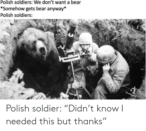 "this: Polish soldier: ""Didn't know I needed this but thanks"""