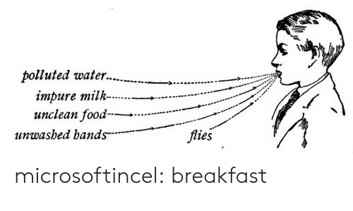 Target, Tumblr, and Blog: polluted water..  impure milk..-.  11nwasbed bands  flies microsoftincel: breakfast