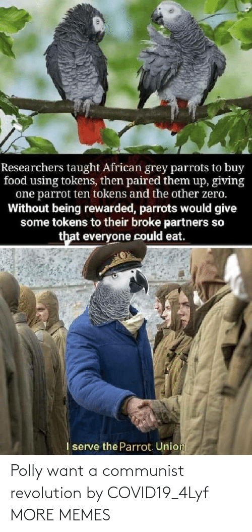A Communist: Polly want a communist revolution by COVID19_4Lyf MORE MEMES