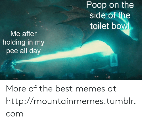 Memes, Poop, and Tumblr: Poop on the  side of the  toilet bowl  Me after  holding in my  pee all day More of the best memes at http://mountainmemes.tumblr.com
