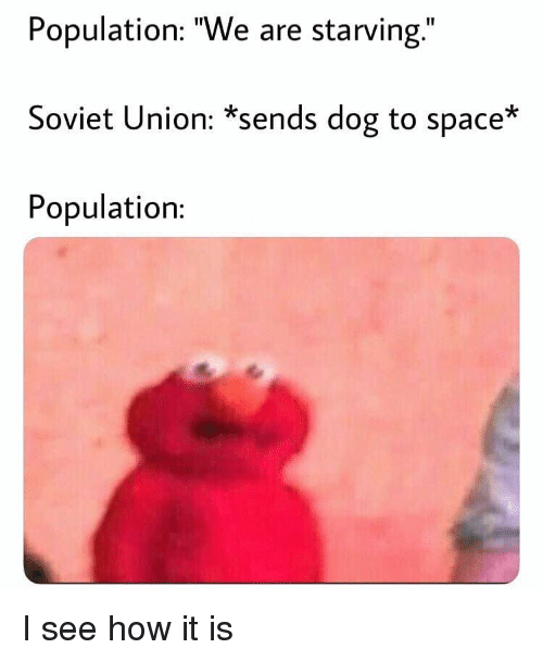 """Memes, Space, and Soviet: Population: """"We are starving.""""  Soviet Union: *sends dog to space*  Population: I see how it is"""