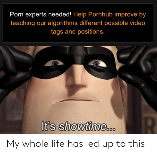 Showtime: Porn experts needed! Help Pornhub improve by  teaching our algorithms different possible video  tags and positions.  R  It's showtime.0 My whole life has led up to this