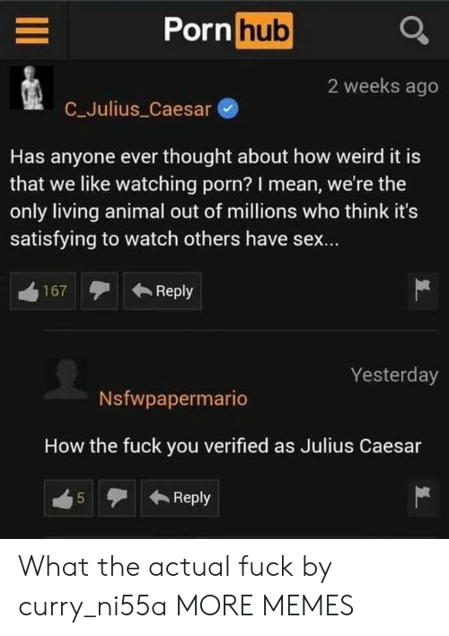 Dank, Fuck You, and Memes: Porn hub  2 weeks ago  C_Julius Caesar  Has anyone ever thought about how weird it is  that we like watching porn? I mean, we're the  only living animal out of millions who think it's  satisfying to watch others have sex...  Reply  167  Yesterday  Nsfwpapermario  How the fuck you verified as Julius Caesar  Reply  5  LO What the actual fuck by curry_ni55a MORE MEMES