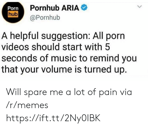 Pornhub Aria: Porn  hub  Pornhub ARIA  @Pornhub  A helpful suggestion: All porn  videos should start with 5  seconds of music to remind you  that your volume is turned up. Will spare me a lot of pain via /r/memes https://ift.tt/2Ny0IBK