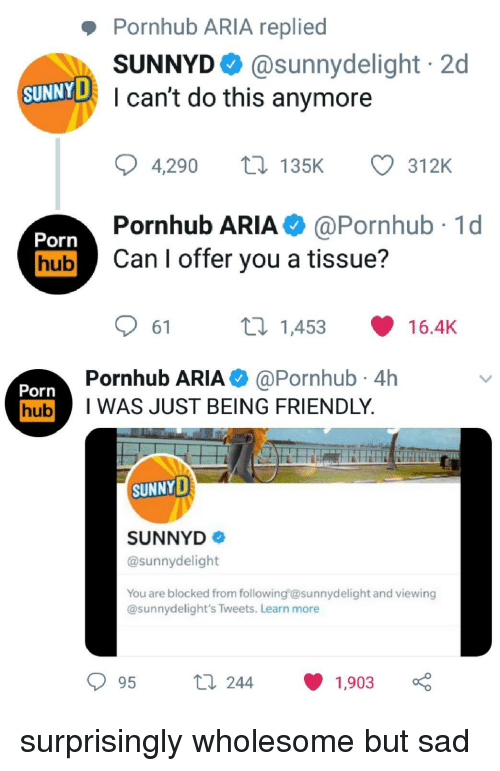 Pornhub Aria: Pornhub ARIA replied  SUNNYD @sunnydelight 2d  I can't do this anymore  SUNNYD  4,290 t135K  312K  Pornhub ARIA@Pornhub 1d  Porn  hubCan I offer you a tissue?  61  ti 1453  16.4K  Pornhub ARIA @Pornhub 4h  Porn  hubI WAS JUST BEING FRIENDLY  SUNNYD  SUNNYD  @sunnydelight  You are blocked from following esunnydelight and viewing  @sunnydelight's Tweets. Learn more  t 244  1903 surprisingly wholesome but sad