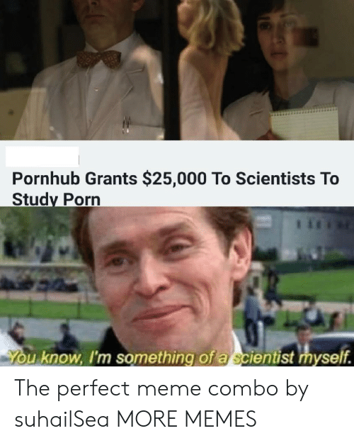 Dank, Meme, and Memes: Pornhub Grants $25,000 To Scientists To  Study Porn  u know, I'm something of a scientist myself. The perfect meme combo by suhailSea MORE MEMES