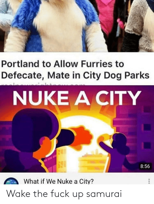 Parks: Portland to Allow Furries to  Defecate, Mate in City Dog Parks  NUKE A CITY  8:56  What if We Nuke a City? Wake the fuck up samurai