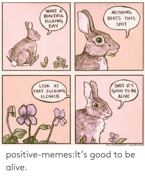 To Be: positive-memes:It's good to be alive.