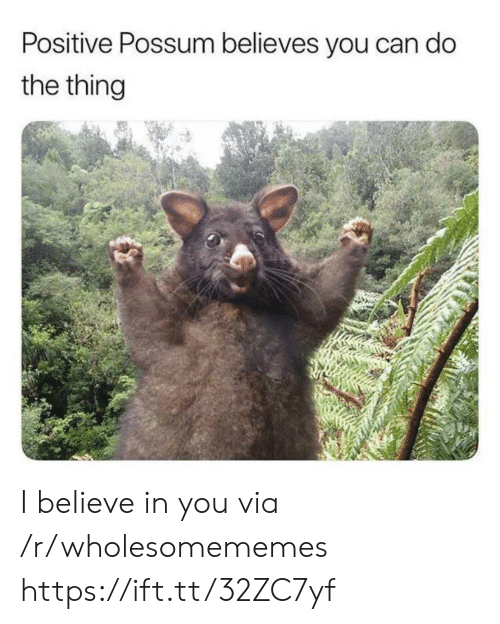 i believe in you: Positive Possum believes you can do  the thing I believe in you via /r/wholesomememes https://ift.tt/32ZC7yf