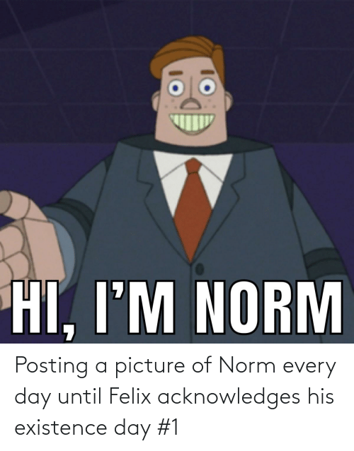 existence: Posting a picture of Norm every day until Felix acknowledges his existence day #1