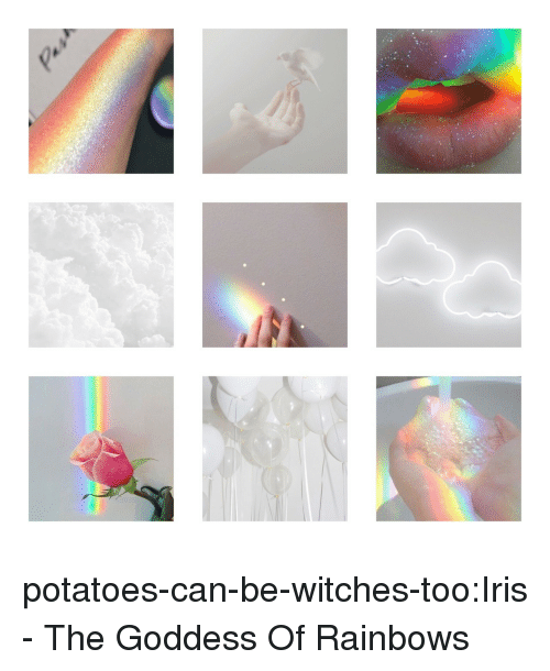 Tumblr, Blog, and Iris: potatoes-can-be-witches-too:Iris - The Goddess Of Rainbows