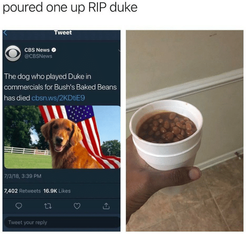Baked, News, and Cbs: poured one up RIP duke  Tweet  CBS News .  @CBSNews  The dog who played Duke in  commercials for Bush's Baked Beans  has died cbsn.ws/2KDtiE9  7/3/18, 3:39 PM  7,402 Retweets 16.9K Likes  Tweet your reply