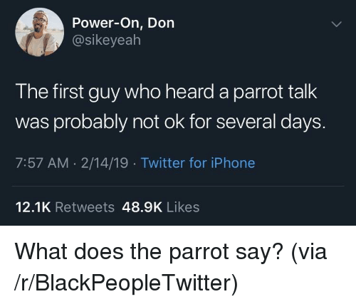 Blackpeopletwitter, Iphone, and Twitter: Power-On, Don  @sikeyealh  The first guy who heard a parrot talk  was probably not ok for several days  7:57 AM 2/14/19 Twitter for iPhone  12.1K Retweets 48.9K Likes What does the parrot say? (via /r/BlackPeopleTwitter)