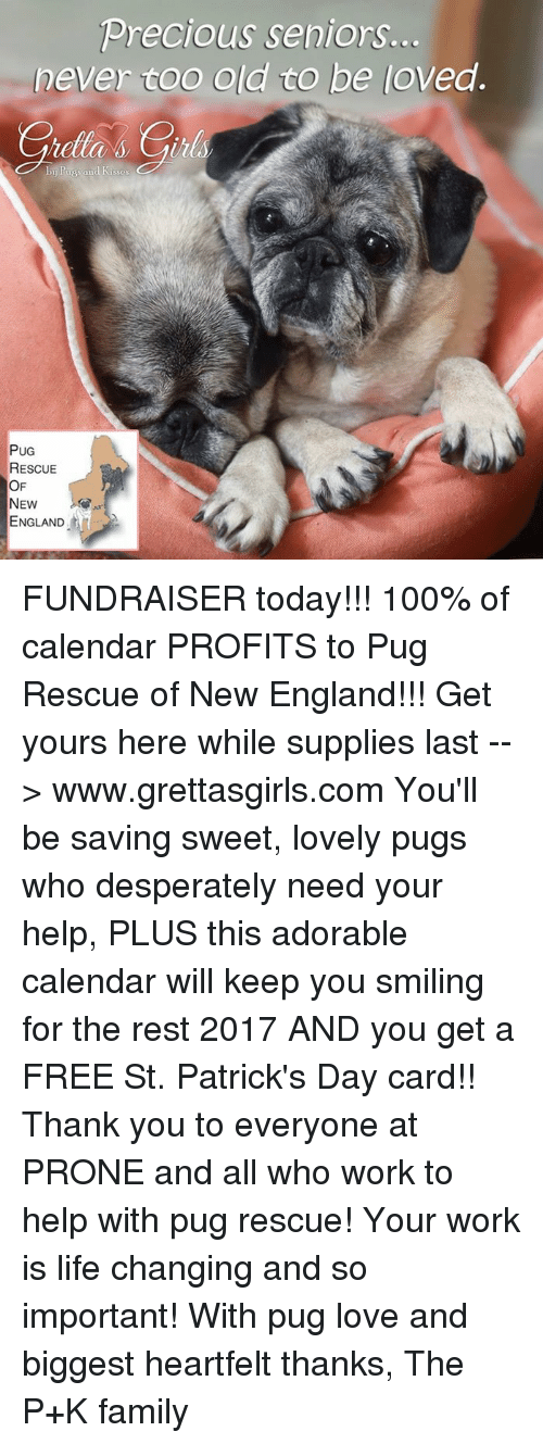 St Patrick Day: Precious seniors.  never coo old to be loved.  PUG  RESCUE  OF  NEW  ENGLAND FUNDRAISER today!!! 100% of calendar PROFITS to Pug Rescue of New England!!! Get yours here while supplies last --> www.grettasgirls.com You'll be saving sweet, lovely pugs who desperately need your help, PLUS this adorable calendar will keep you smiling for the rest 2017 AND you get a FREE St. Patrick's Day card!! Thank you to everyone at PRONE and all who work to help with pug rescue! Your work is life changing and so important! With pug love and biggest heartfelt thanks, The P+K family
