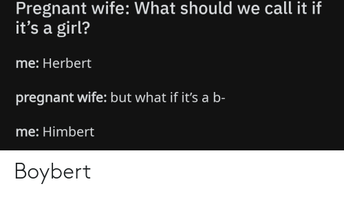 Pregnant Wife: Pregnant wife: What should we call it if  it's a girl?  me: Herbert  pregnant wife: but what if it's a b-  me: Himbert Boybert
