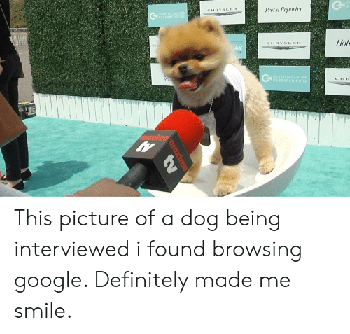 Definitely, Google, and Cancer: Prel a Reporler  CHRYSLER  RIAN  llol  CHRYSLER  THE  AY  OVARIAN CANCER  RESEARCH FUND  CHR This picture of a dog being interviewed i found browsing google. Definitely made me smile.