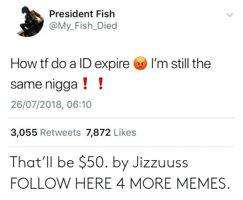 My Fish: President Fish  @My_Fish_Died  How tf do a ID expire I'm still the  same nigga!!  26/07/2018, 06:10  3,055 Retweets 7,872 Likes That'll be $50. by Jizzuuss FOLLOW HERE 4 MORE MEMES.