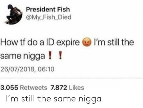 My Fish: President Fish  @My_Fish Died  I'm still the  How tf do a ID expire  same nigga!!  26/07/2018, 06:10  3.055 Retweets 7.872 Likes I'm still the same nigga