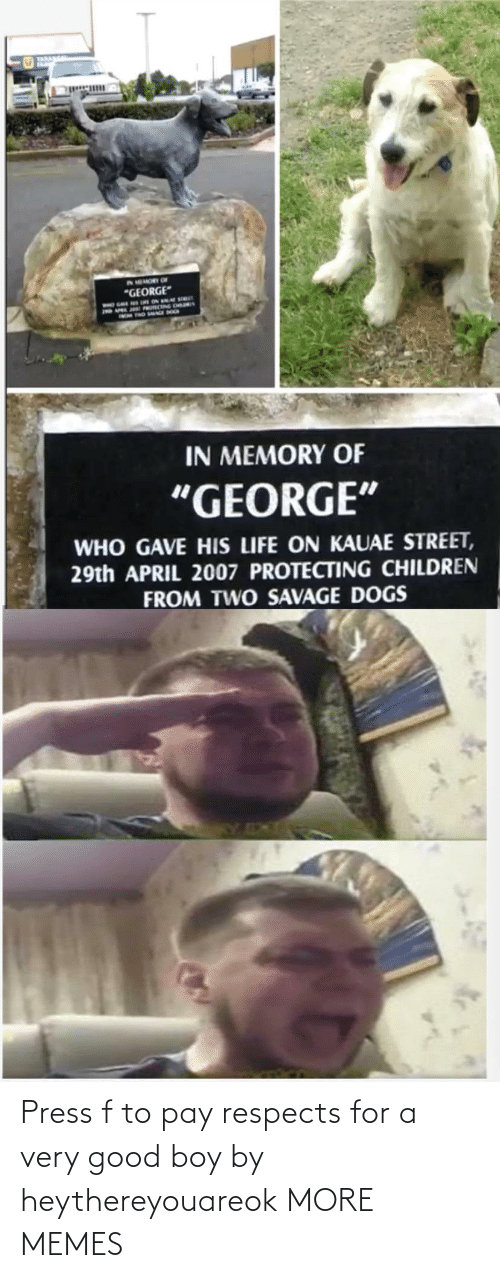 Very Good: Press f to pay respects for a very good boy by heythereyouareok MORE MEMES